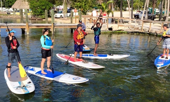 Ace-tec Stand Up Paddleboard Rental In Key Largo