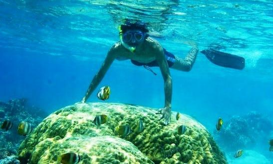 Snorkeling Tour On Gili Island