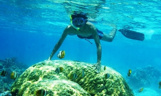 Snorkeling Tour On Gili Island