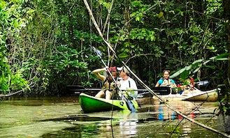 Wildlife Kayak Tour In Tela