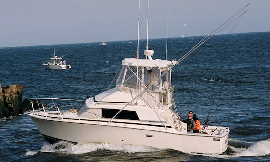 33' Sport Fisherman Fishing Trips In Point Pleasant, New Jersey United States