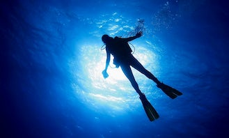 Diving Trips in Yellowhead County, Canada