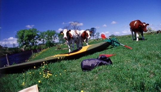 1-person Kayak Hire In Otterndorf