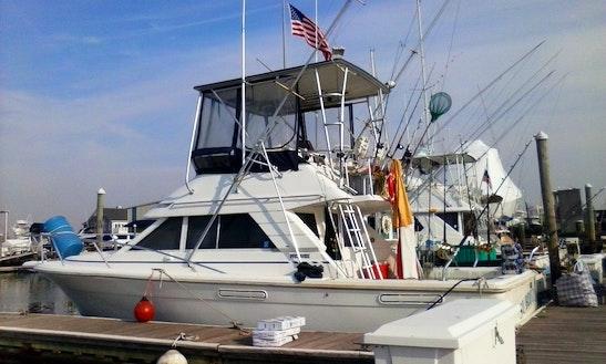 Fishing Charters On 38ft