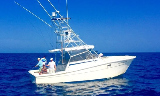 33' Offshore Fishing Charter In Port Canaveral