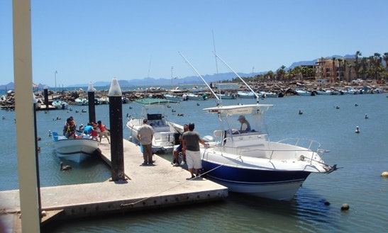 29' Fishing Trip Charter In Loreto