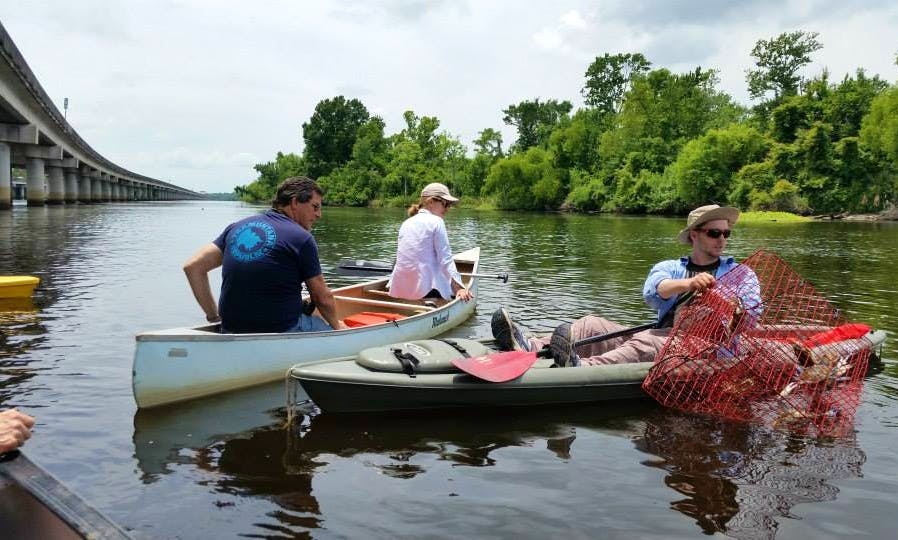 Canoe or Kayak Swamp Tour on Manchac Wetlands in Louisiana