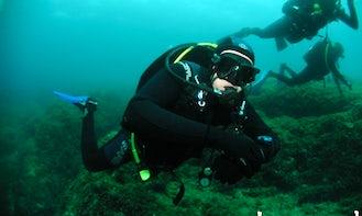 Diving in Warszawa