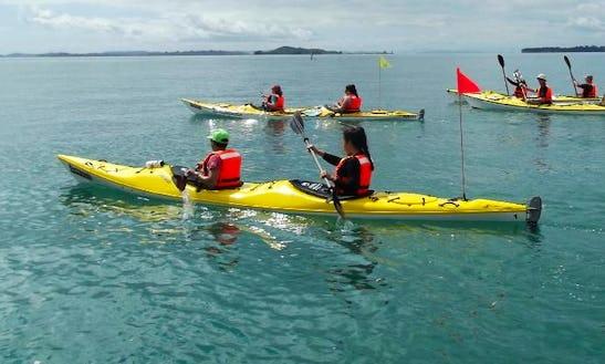 (2 Pax) Kayak In Auckland