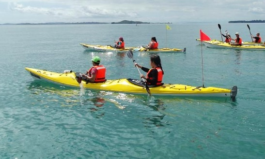 (2 Pax) Kayak In Auckland