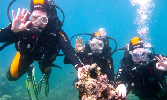 Scuba Diving Trips In Rethimno