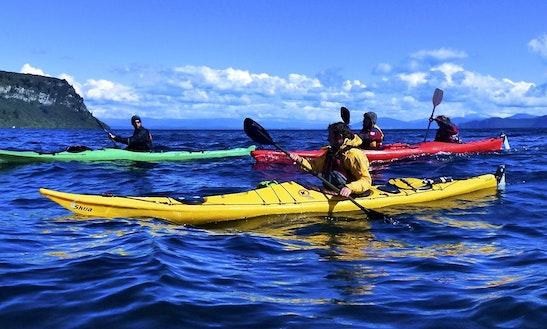 Kayak In Auckland