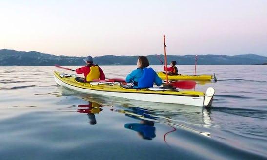 Kayak In Wellington