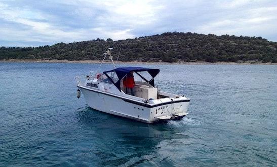 Bonito Fishing Boat In Jezera