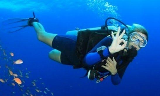 Diving In Kalethar