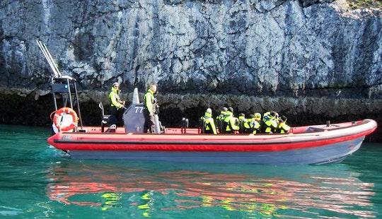 Whale Watching Tour In Húsavík