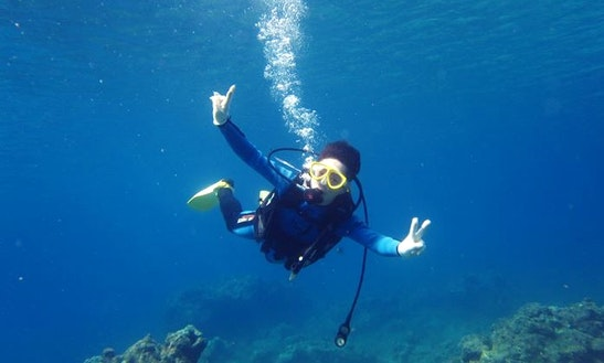Diving In Yakushima-chō