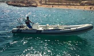 RIB Rental in Sharm El Sheikh