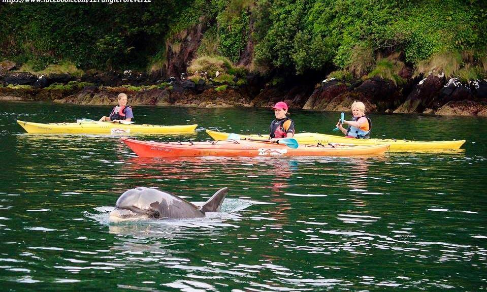 Single Kayak Hire in Burnham Dingle