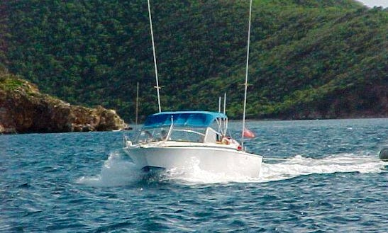 28' Bertram Boat In Tortola