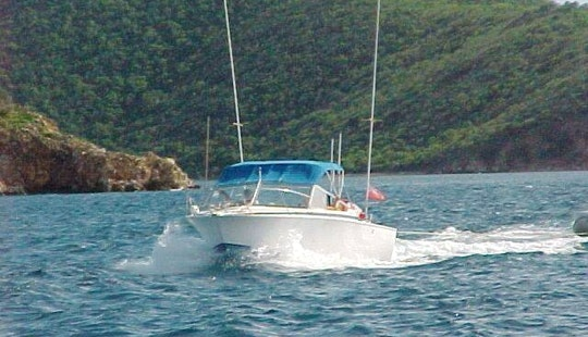 28' Bertram Boat In Tortola