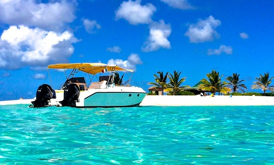 Power Cat 27 Boat Charter In Sint Maarten
