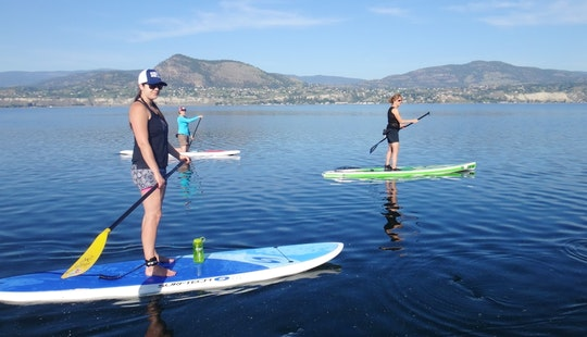 Stand Up Paddleboard Lessons In Dorado