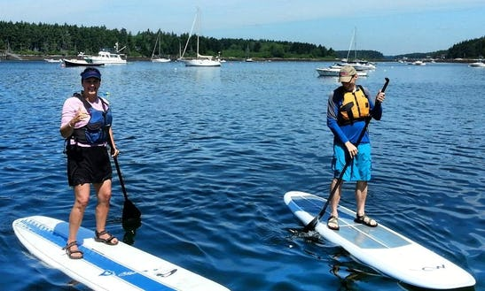 Paddleboard Tour  In West Bath