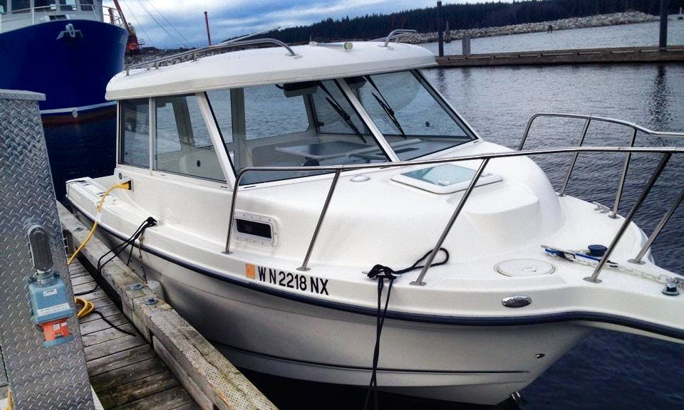 24' Seaswirl Striper Hardtop Yacht In Port McNeill