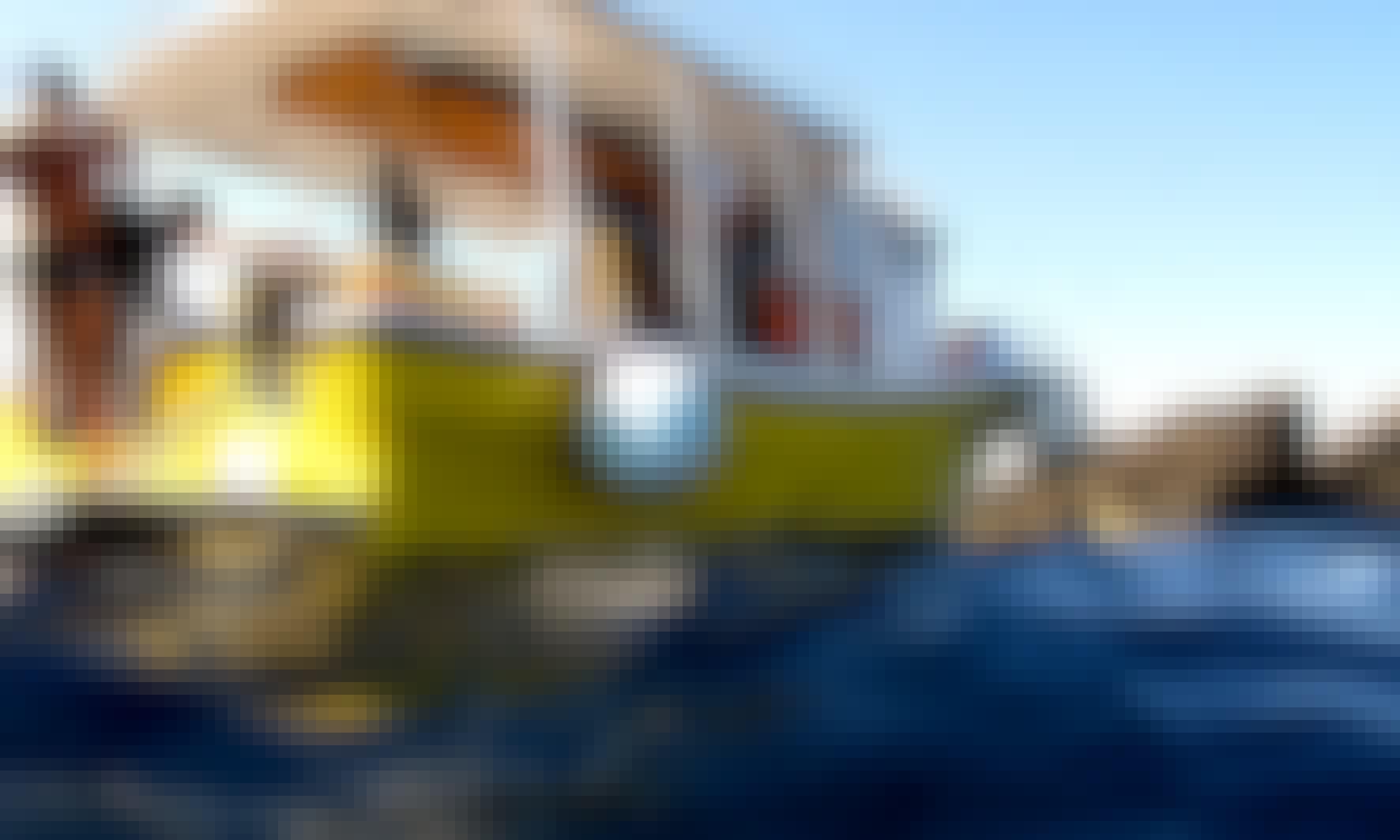 Scuba Diving in Ustica