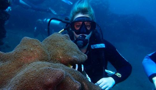 Diving Trips In Sukawati