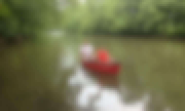Canoeing Trips in East Riverside Dr