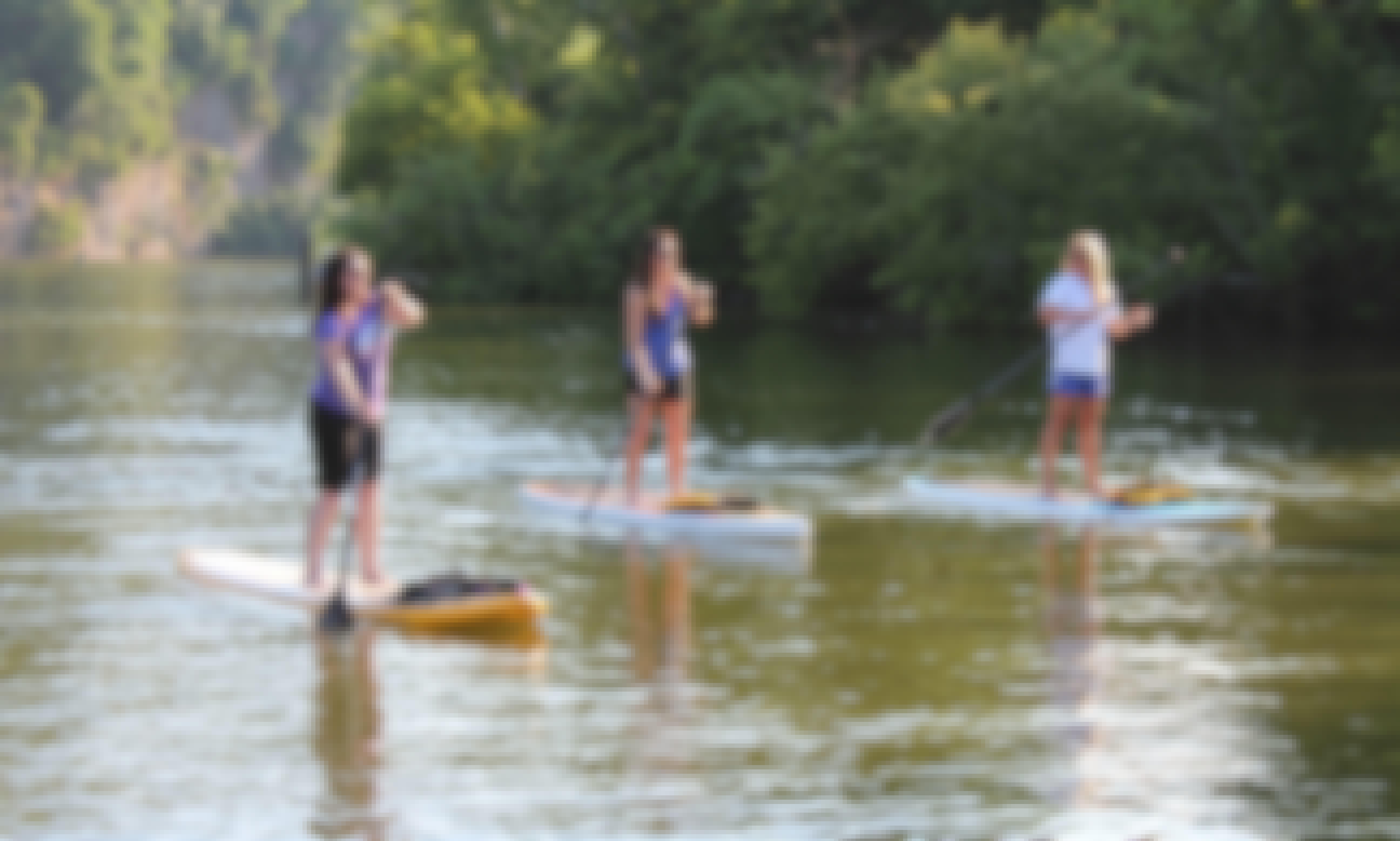 Paddleboarding Trips in East Riverside Dr