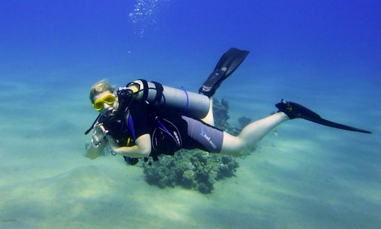 Padi Discover Scuba Diving In Egypt