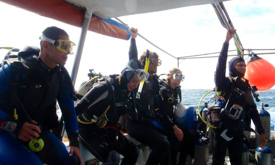 Day Dive Trips And Padi Diving Courses In Puerto Ayora, Ecuador