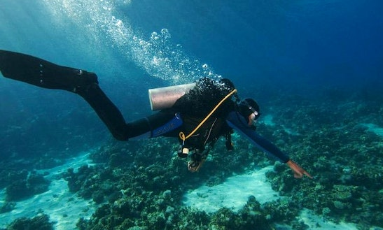 Diving Trips & Courses In Dahab