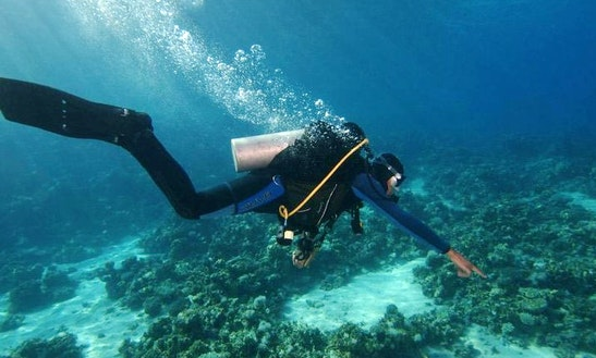 Diving Trips & Courses For New Divers And Advanced