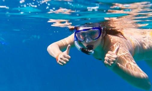 Guided Snorkeling Trips in Eilat