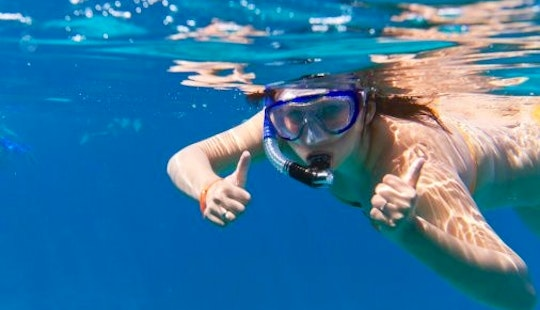 Guided Snorkeling Trips In Eilat