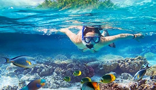 Snorkeling Trips In Eilat