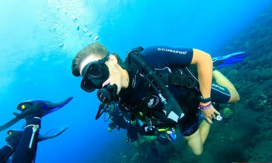 Diving Safari & Padi Courses In Abang