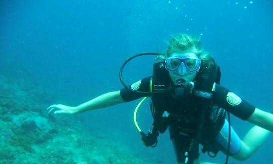 Padi Diving Program In Malindi