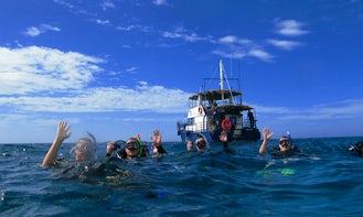 """49' Whale Watching """"Kiunia"""" in Tongatapu, Tonga"""