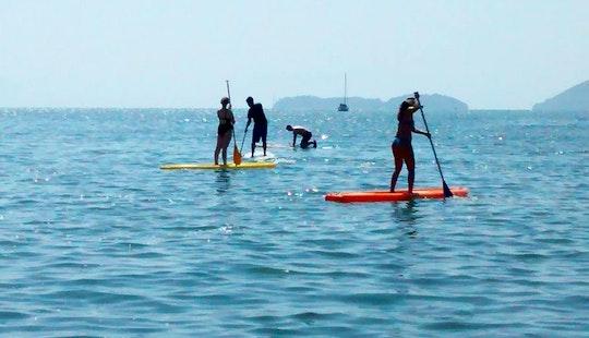 Paddleboard In Paraty, Fun Garantee