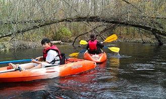 Enjoy a Single Kayaking Trips in West Columbia, South Carolina