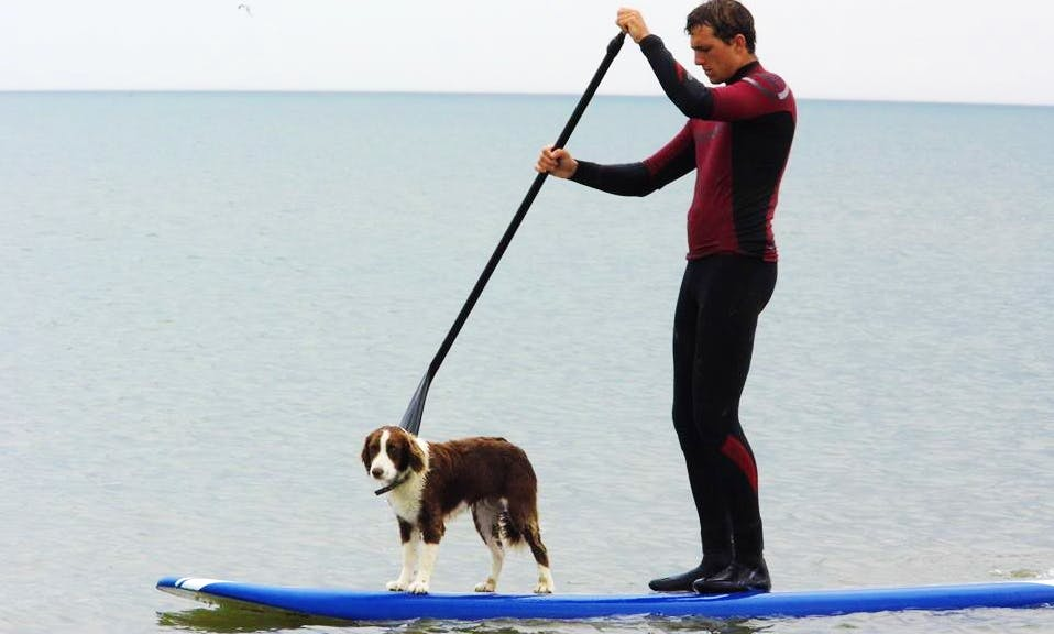 Paddleboard Rental & Lessons in Wexford, Ireland