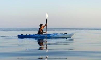 Kayak Rental & Courses in Winningen, Germany