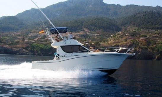 Sport Fisherman Fishing Charter In Alcúdia