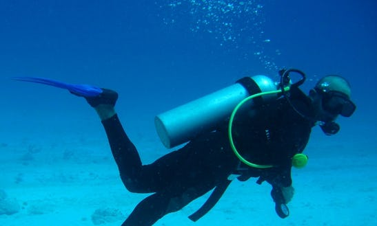 Diving Trips In Bali