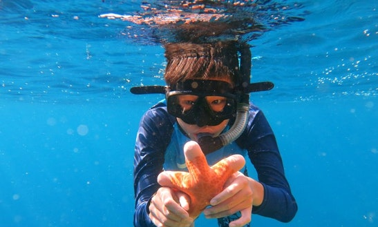 Snorkeling Trips In Bali